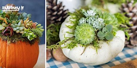 Succulent Pumpkin Centrepiece tickets
