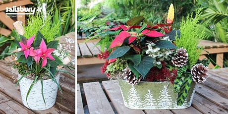 Festive  Holiday Planter tickets