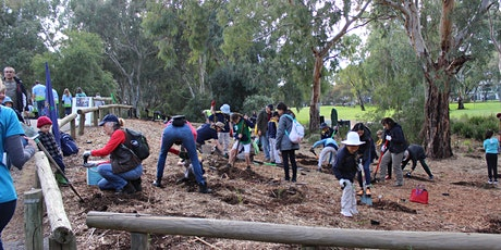 Liascos Reserve Community Planting tickets