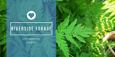 Fungi & Hedgerow Forage tickets