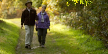 Wild Walks (Cambourne): Summer Stroll tickets