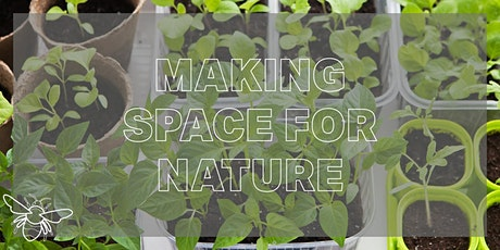 Grow a WINDOWSILL FOOD CROP with Making Space for Nature tickets