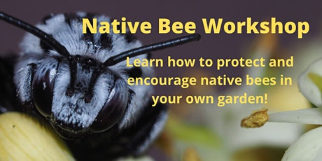 Your Garden is a Habitat: Native Bee Workshop tickets
