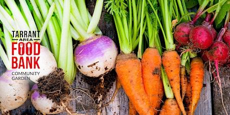 Virtual Cooking Class - Kitchen Garden Cooking School - Okra tickets