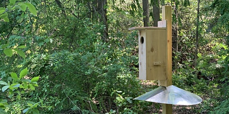 Building a Home for Wildlife - Nest Boxes , Feeders and More! tickets