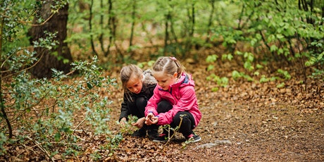 Wild in the Woods (Cambourne): Self-guided Family Adventure Trail 4 tickets