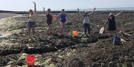 Seaweed Safari and Brunch with Stacey Manser-Knight tickets