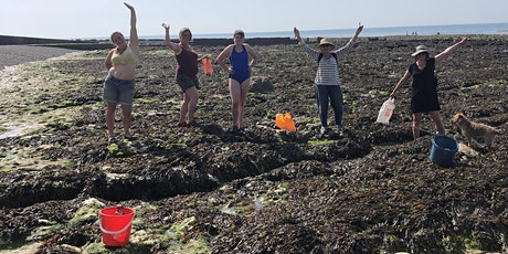 Seaweed Safari, Supper and Sunset with Stacey Manser-Knight tickets