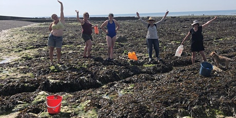 Seaweed Safari, Sunset and Supper with Stacey Manser-Knight tickets