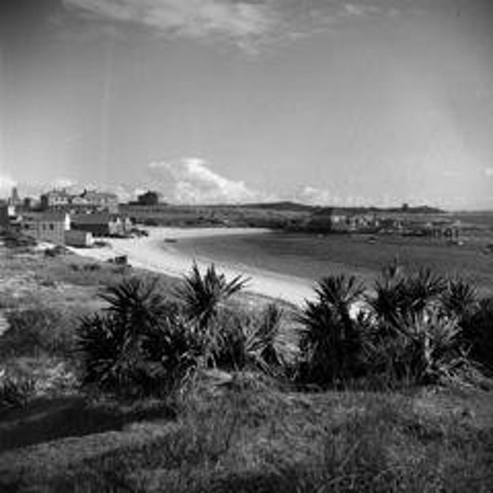 Curator's Tour of Max Dupain and La Perouse: The Caltex Story image