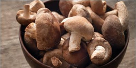 Shiitake Mushrooms: Magic, Folklore and Gastronomy tickets