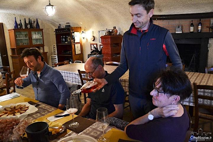 Immagine Degustazione Vini in Cantina Bergamini a Colà di Lazise