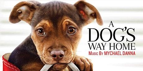 A dog's way home - ingresso € 3 (gratuito per i minori di 12 anni) biglietti