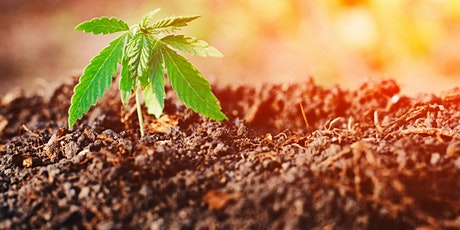 Resilience of an Ancestral Plant- Past, Present, Future: Hemp and Marijuana tickets