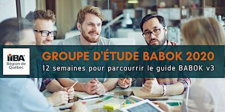 Groupe d'étude du BABOK 2020 billets