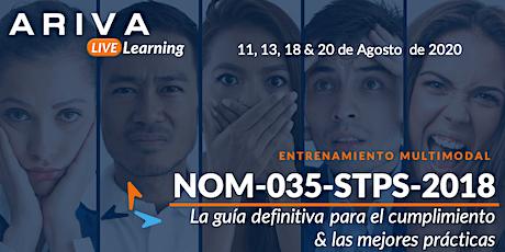 """NOM-035 """"La Guía Definitiva para el Cumplimiento y Mejores Prácticas"""" entradas"""