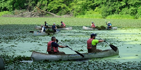 Water Chestnut Removal at Tibbetts Brook Park tickets