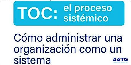 TOC: Proceso sistémico entradas