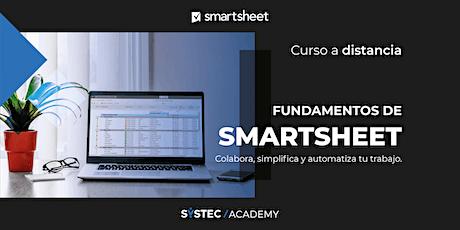 Curso de Fundamentos de  Smartsheet  |  A distancia (duración: 12 horas) boletos