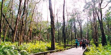 NaturallyGC Coombabah Lakelands Bushwalk tickets