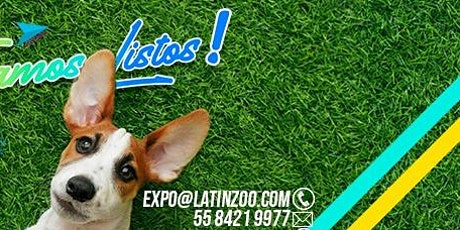 LATINZOO 2021 boletos