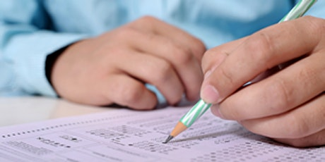 Spanish One-to-one DELE Exam Preparation entradas