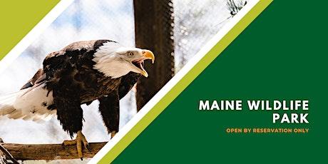 Maine Wildlife Park Reservations August 2020 tickets