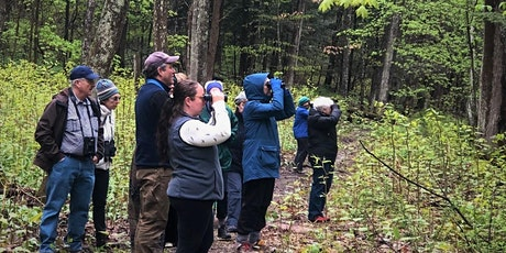 Online Bird Walks at The Mount tickets