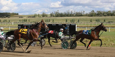 Standardbred Horse Race Season - Race Day #12 tickets