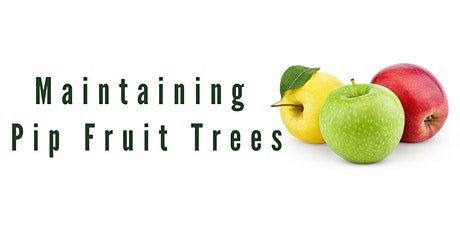 Maintaining Pip Fruit Trees tickets