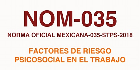Curso de Elaboración programa NOM 035 STPS:  Riesgos Psicosociales entradas