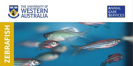 Animal Care Services - Zebrafish Workshop 1 tickets
