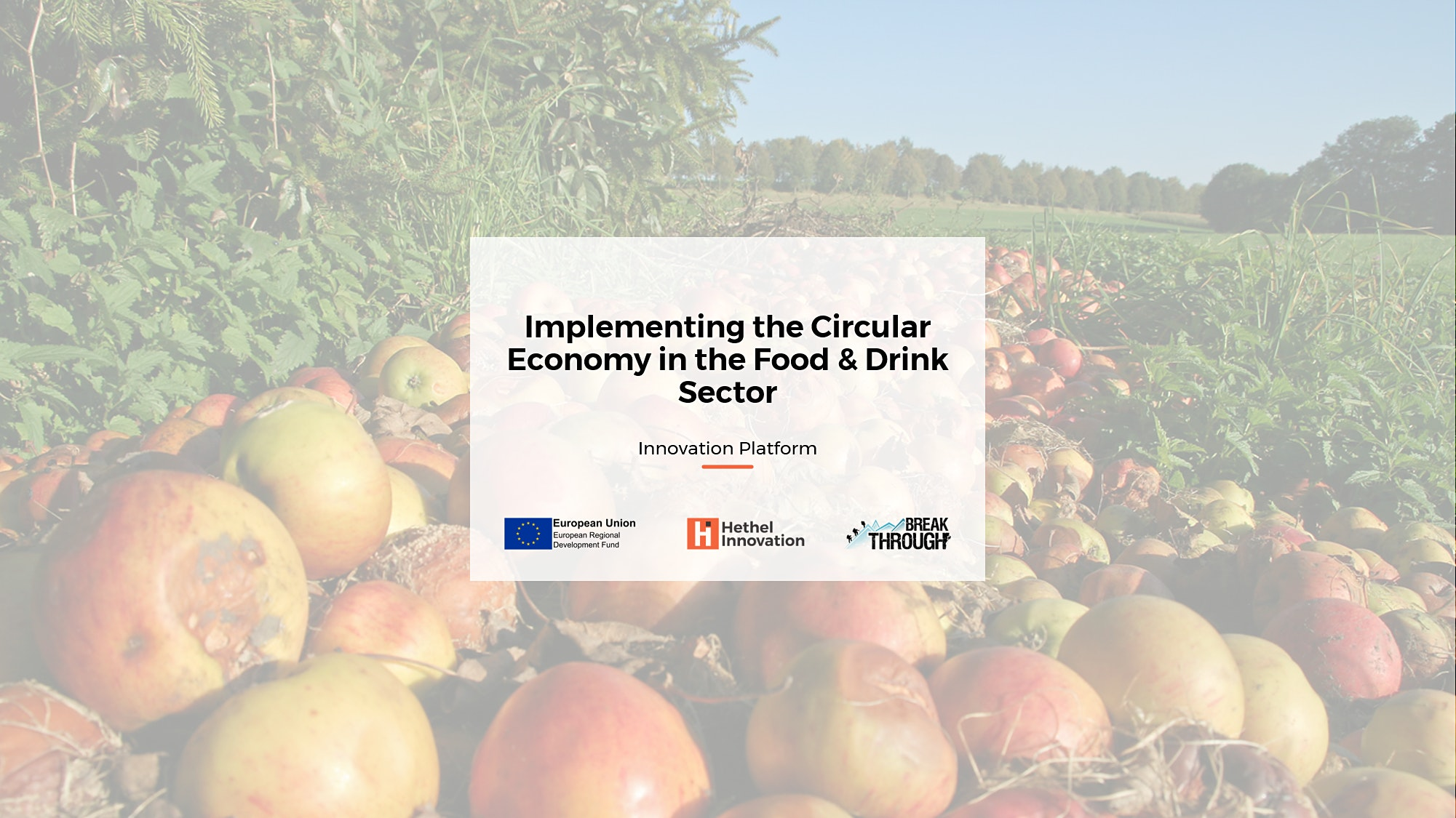 Implementing the Circular Economy in the Food & Drink Sector