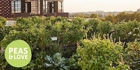Visite et dégustation de la ferme urbaine Peas&Love@Yooma Paris 15ème billets