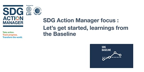 SDG Action Manager focus : Let's get started, learnings from the Baseline tickets