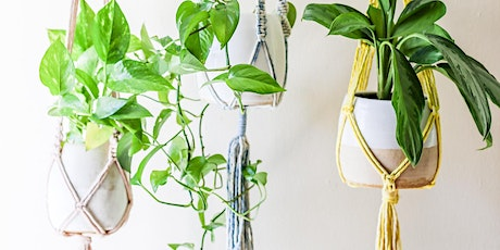 Choose Your Own Adventure: Macrame Plant Hanger Workshop tickets