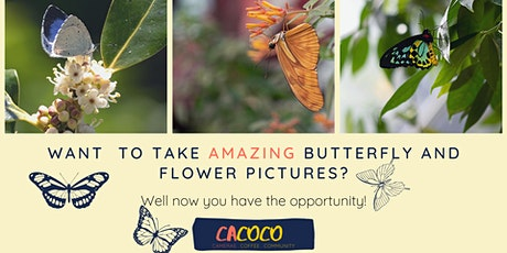 Butterfly and Macro Photography Workshop at Malahide Castle! tickets