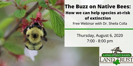 The Buzz on Native Bees: How we can help Species at-Risk of Extinction. tickets