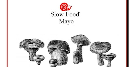 Mushroom Foraging Walk - Slow Food Mayo tickets