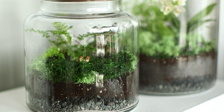 Childrens Make a sealed Terrarium Day tickets
