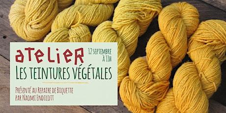 Atelier - Les teintures végétales billets