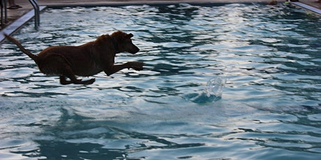 9th Annual Pooch Plunge tickets