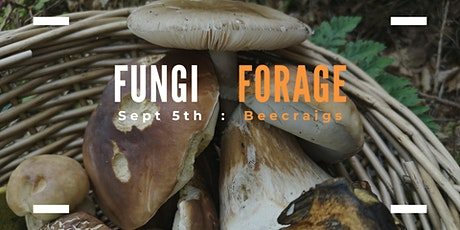 Fungi Foray: Guided Mushroom Walk tickets