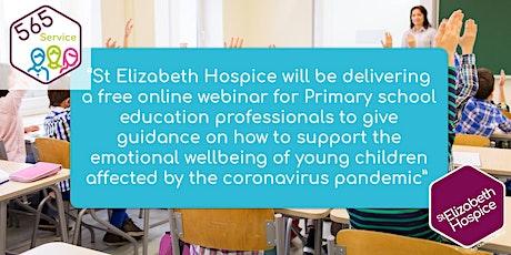 565 Service: Webinar for primary school education professionals tickets
