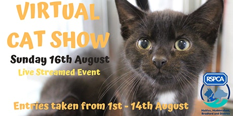 RSPCA Virtual Cat Show tickets