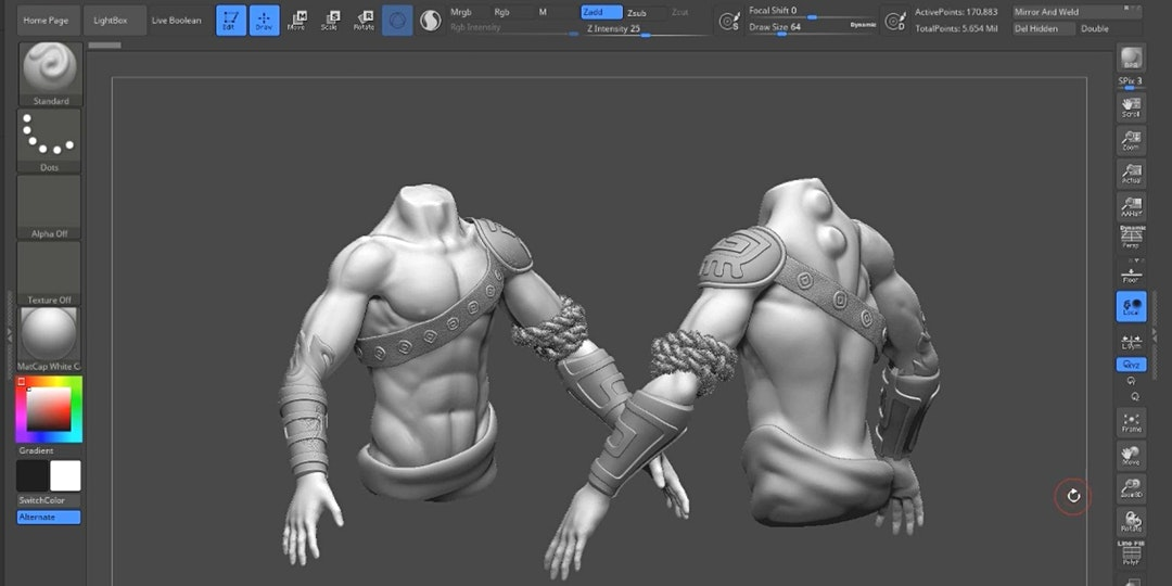 Digital Sculpting in ZBrush: Character Creation für Anfänger