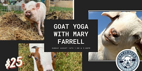 Goat Yoga at Charlotte's Freedom Farm tickets