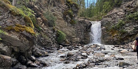 Chasing waterfalls: Beginner  Guided Hike- Allstones creek (Nordegg area) tickets