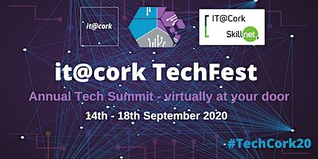 it@cork TechFest tickets
