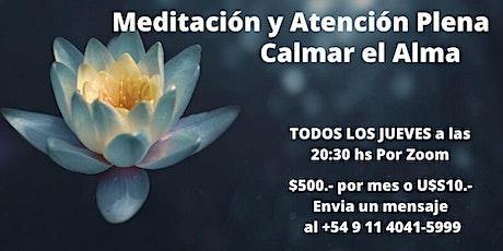 Meditación y Atención Plena - Calmar el Alma entradas